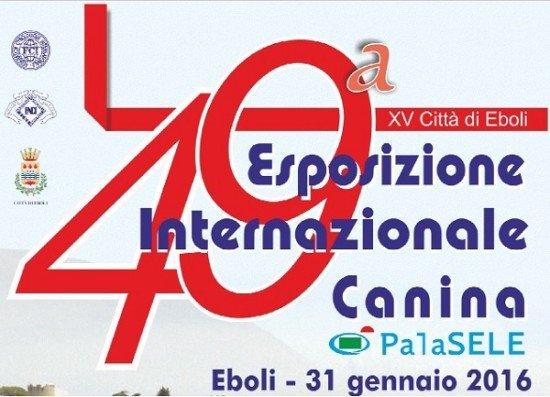 49 esposizione internazionale canina cacib 2016 eboli