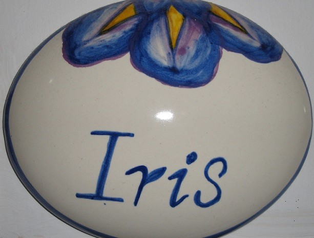 particolare monolocale Iris B&B Battipaglia